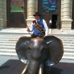 Harry am Elefanten